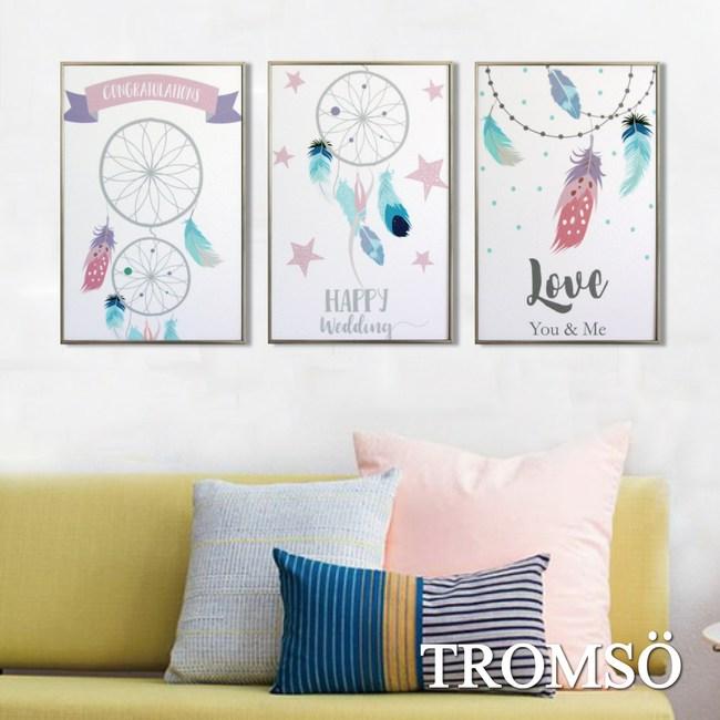 TROMSO北歐生活版畫有框畫-美夢羽毛WA129(三幅一組)
