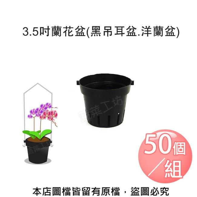 3.5吋蘭花盆(黑吊耳盆.洋蘭盆) 50個/組