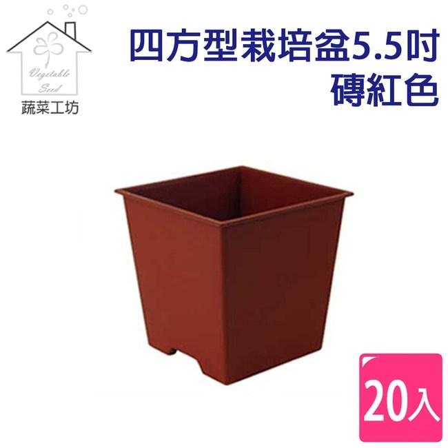 四方型栽培盆5.5吋-磚紅色(厚)20個/組