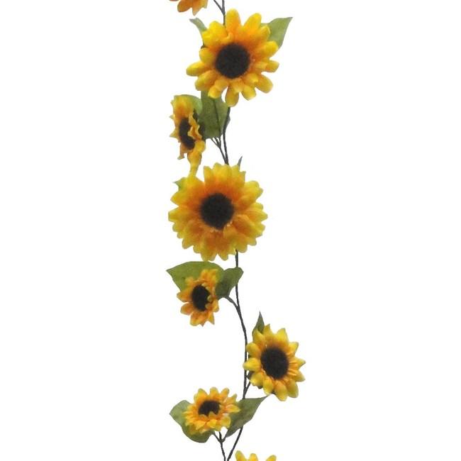 向日葵串6尺