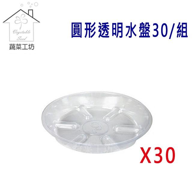 圓形透明水盤10吋30個/組