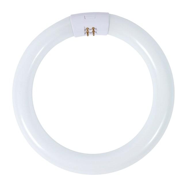 東亞三波長環型燈管晝光色1P