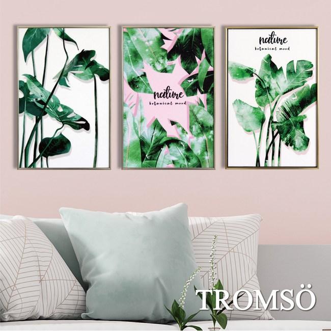 TROMSO北歐生活版畫有框畫-芭葉交響曲WA131(三幅一組)