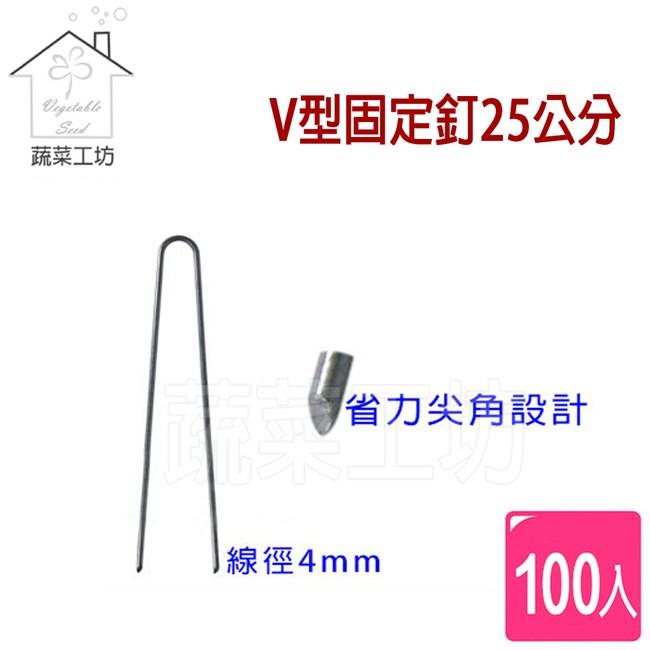 V型固定釘25公分100支/組(線徑4mm.V型釘.鐵線釘)