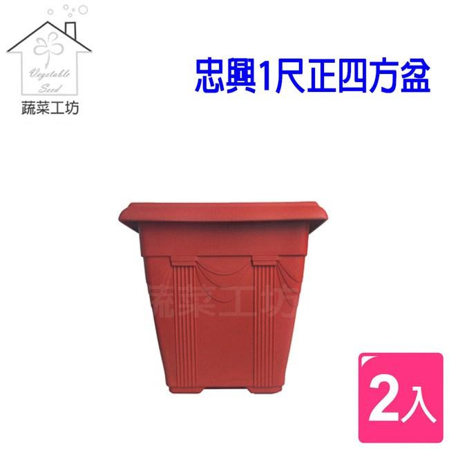 忠興1尺正四方盆磚紅色 2個/組