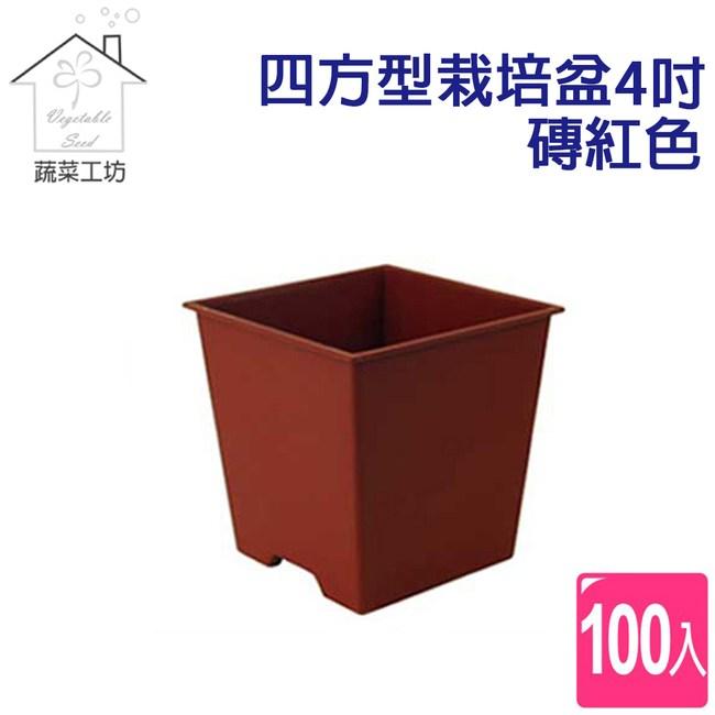 四方型栽培盆4吋-磚紅色(厚) 100個/組
