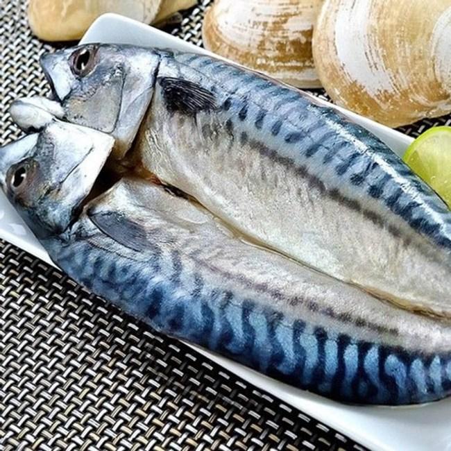 【愛上新鮮】挪威整尾鯖魚10包(290g±10%/尾)