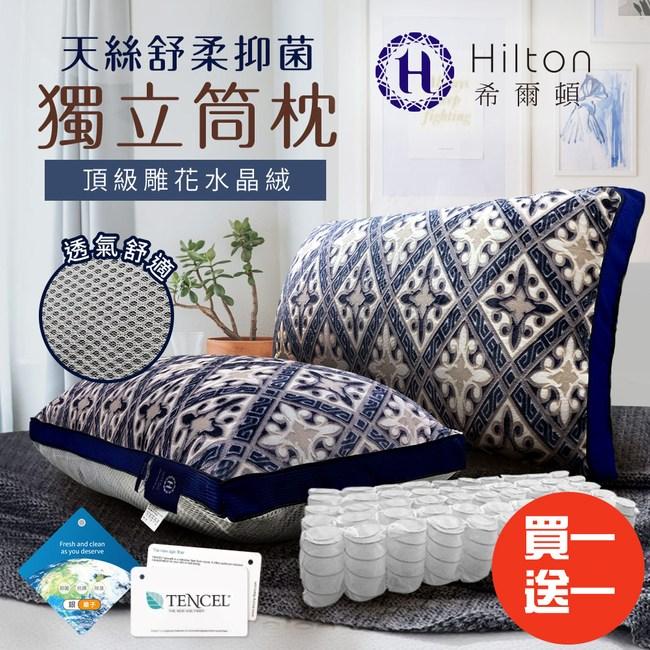 【Hilton 希爾頓】皇室宮廷銀離子手工雕花天絲獨立筒枕/買一送一