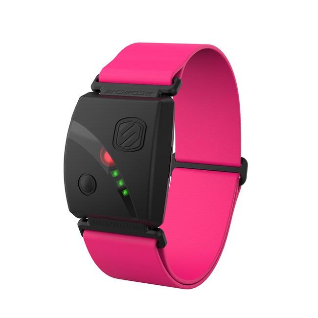Scosche Rhythm24 手臂式心跳帶粉紅色