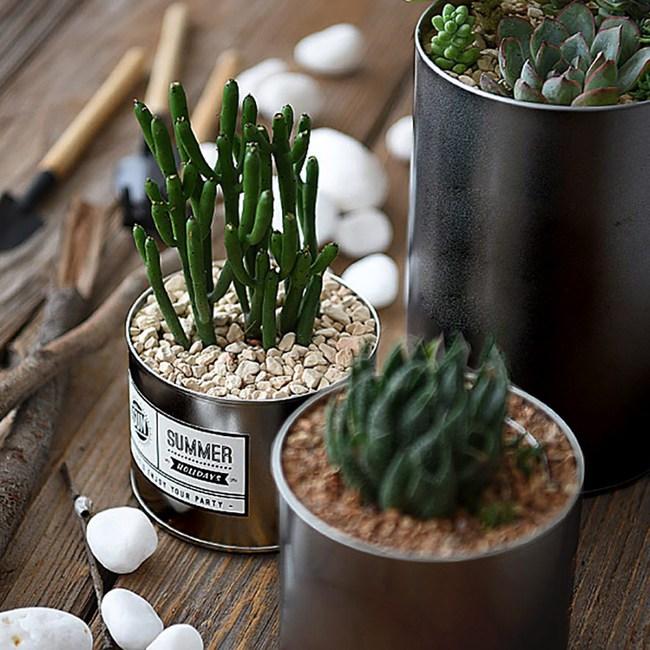 【Meric Garden】創意北歐ins風鐵罐/盆栽收納罐(無蓋)黑-大