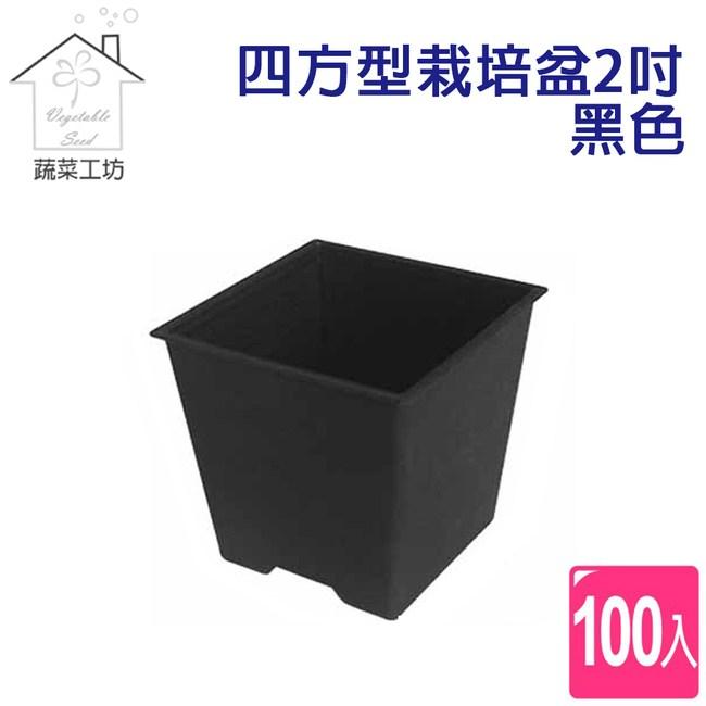 四方型栽培盆2吋-黑色(厚) 100個/組