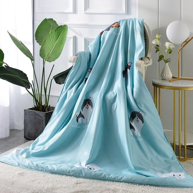 【Betrise追夢】3M吸濕排汗專利天絲鋪棉涼被一入5X6.5尺