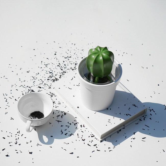 QUALY|仙人掌咖啡罐-白
