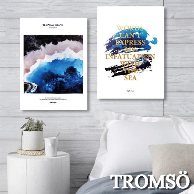 TROMSO時尚無框畫/暢藍海洋(二入)