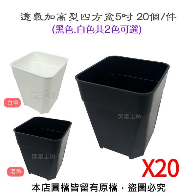 透氣加高型四方盆5吋20入/組(黑色.白色共2色可選)白色