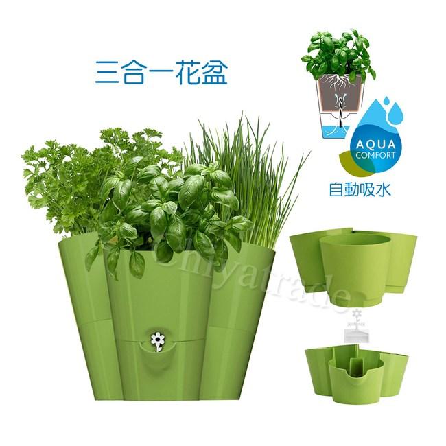 【德國EMSA】三合一園藝自動澆水吸水器 花盆植栽盆栽 缺水提示-綠
