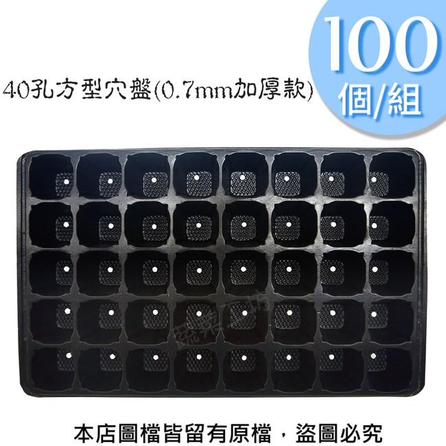 40孔方型穴盤100個/組(0.7mm加厚款)