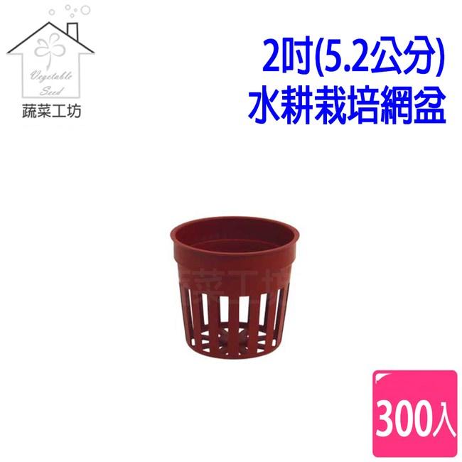 2吋(5.2公分)水耕栽培網盆(水草栽培盆)300個/組(磚紅色)
