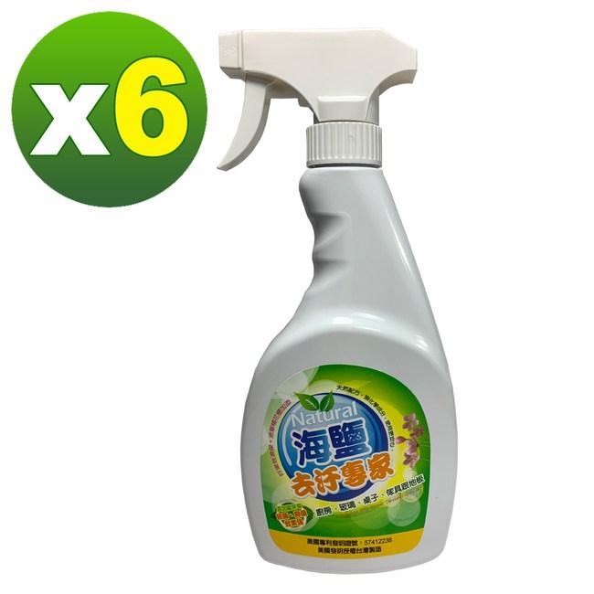【環寶靈】海鹽去汙專家500ml(6瓶/組)