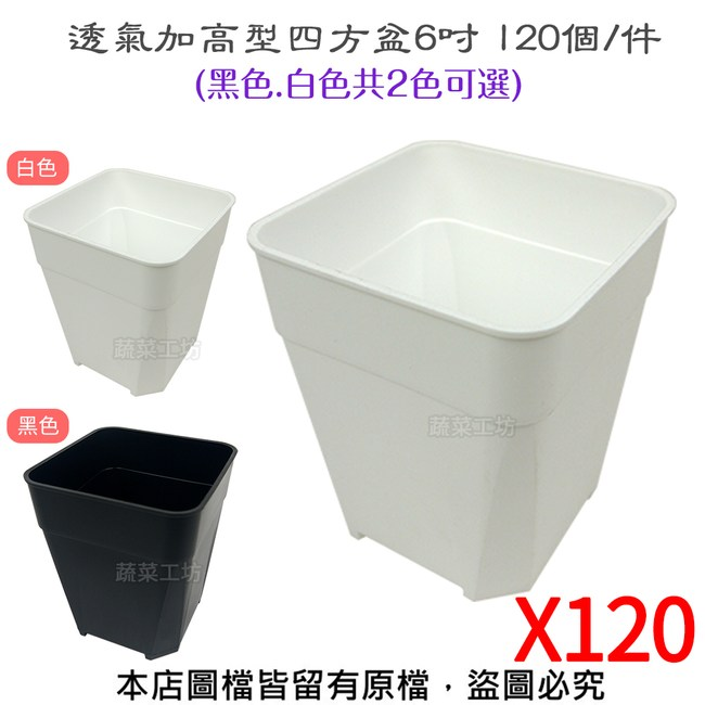 透氣加高型四方盆6吋 120個/件(黑色.白色共2色可選)白色