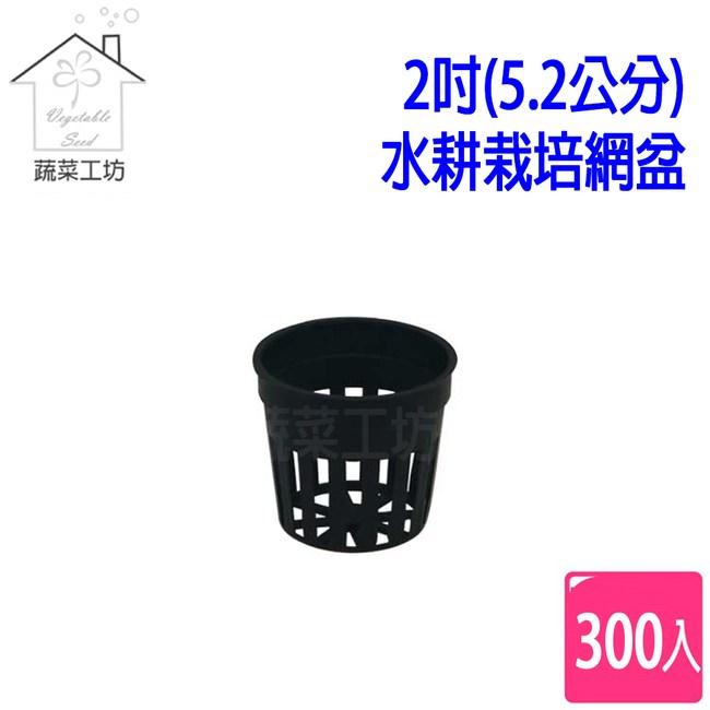 2吋(5.2公分)水耕栽培網盆(水草栽培盆)300個/組(黑色)