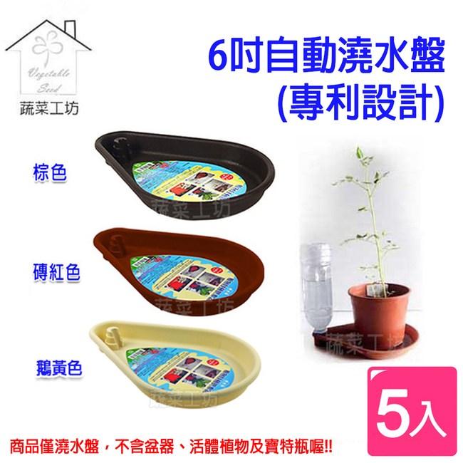 6吋自動澆水盤(專利設計) 5個/組-棕色