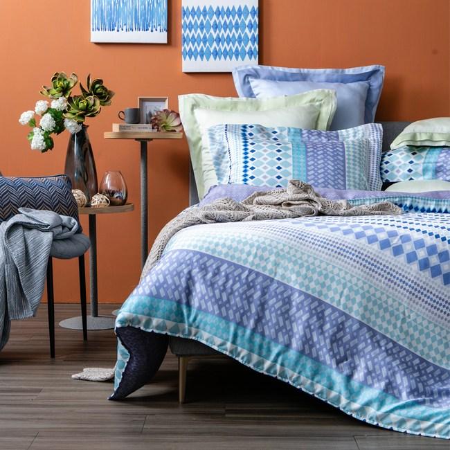 (組)瑞格天絲床包兩用被組雙人+天絲記憶曲線型對枕