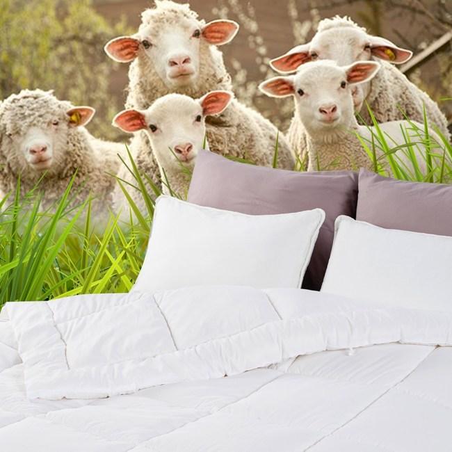 HOLA 保暖羊毛被 雙人