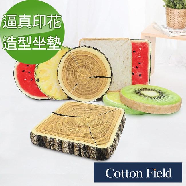棉花田【繽紛】多功能造型印花坐墊-5款可選圓形-西瓜