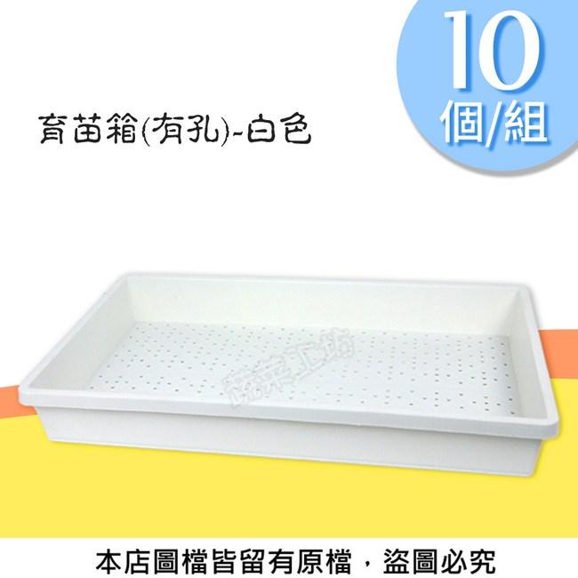 育苗箱(有孔)-白色(育苗盤.芽菜箱.可當四方型栽培盆端盤)10個/組