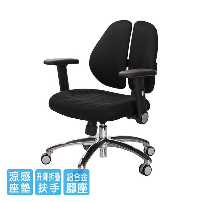 GXG 短背涼感 雙背椅 (鋁腳/摺疊升降扶手)TW-2992 LU1#訂購備註顏色