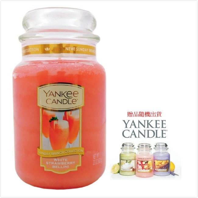 YANKEE CANDLE 香氛蠟燭-貝里斯草(買623g送104g)