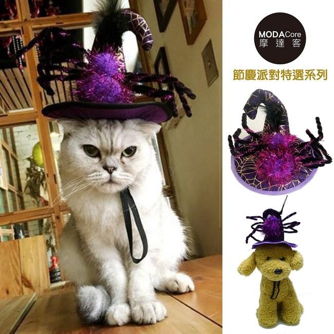 摩達客 寵物萬聖節派對-紫色蜘蛛巫婆帽變裝造型貓咪小狗頭飾單一尺寸