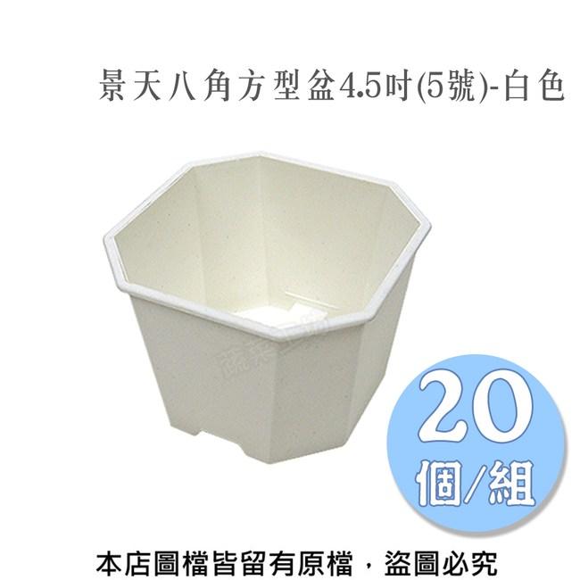 景天八角方型盆4.5吋(5號)-白色 20個/組