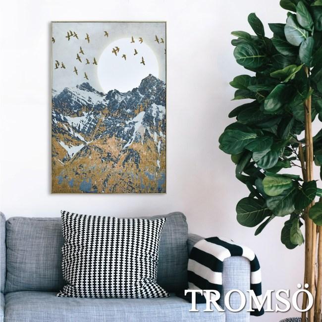 TROMSO北歐風尚板畫有框畫-日初登峰40X60CM