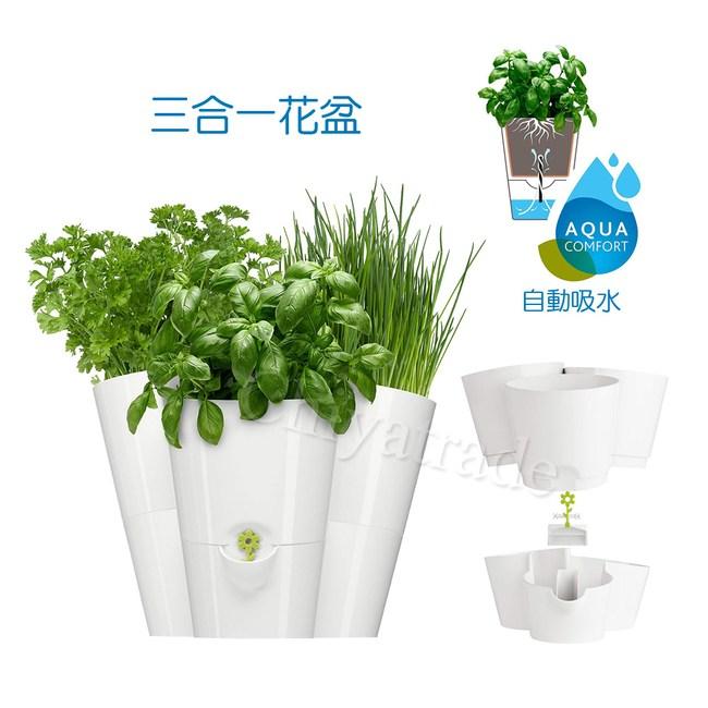【德國EMSA】三合一園藝自動澆水吸水器 花盆植栽盆栽 缺水提示-白
