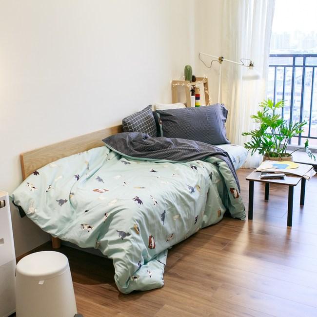 貓窩 100%精梳棉 床包兩用被組/加大  棉床本舖