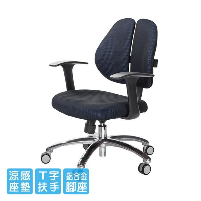 GXG 短背涼感 雙背椅 (鋁腳/T字扶手)TW-2992 LU#訂購備註顏色