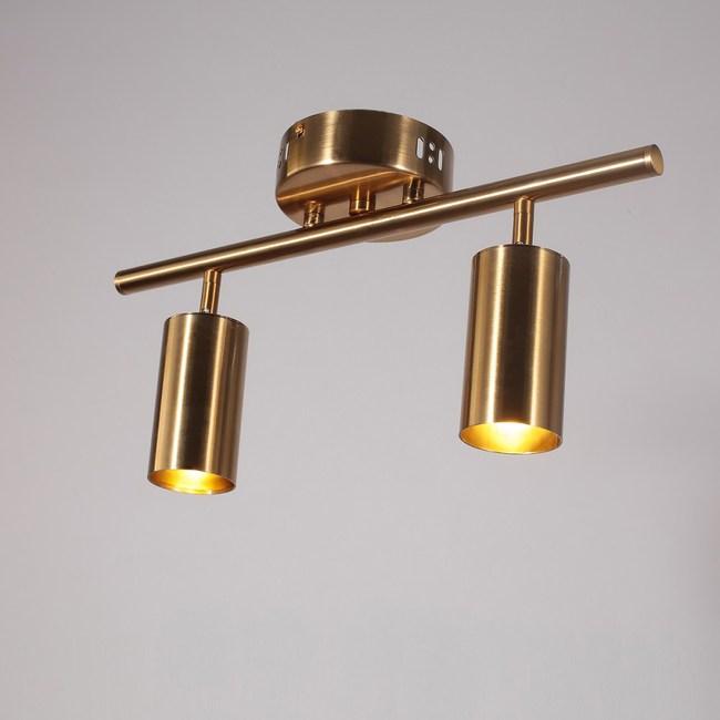 【obis】大衛吸頂燈/壁燈-2燈