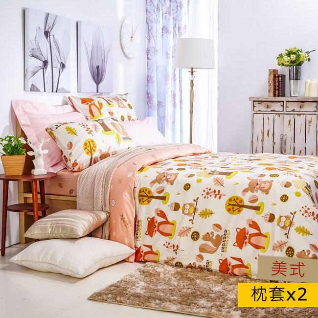 HOLA 歡樂莊園防螨抗菌枕套2入