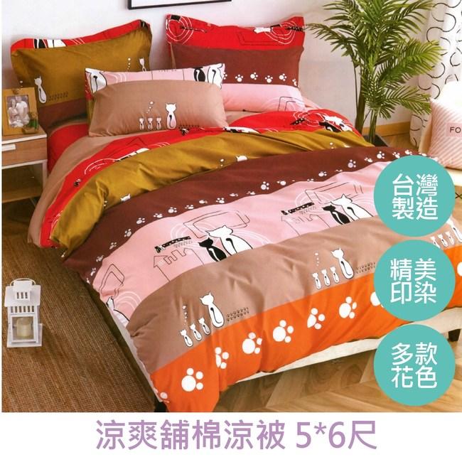 【eyah 宜雅】台灣製時尚品味100%超細雲絲絨舖棉涼被-情侶貓咪