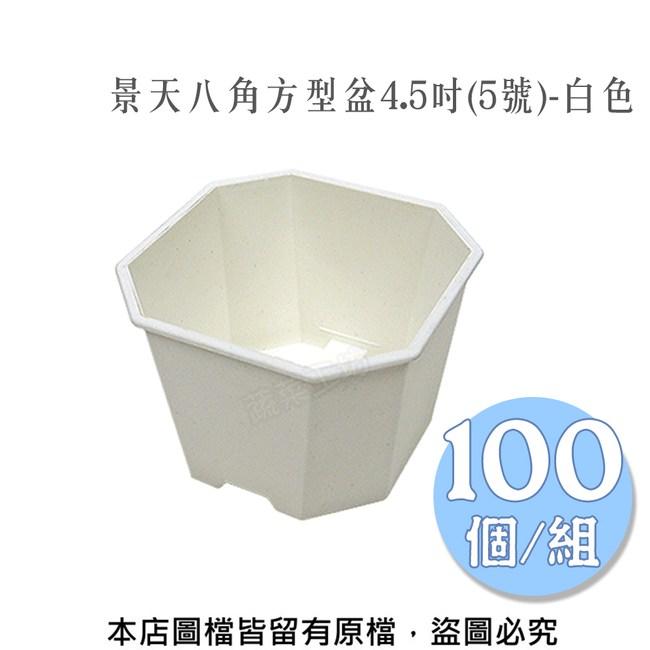 景天八角方型盆4.5吋(5號)-白色 100個/組