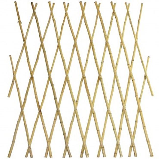貴竹伸縮籬笆 H120cm