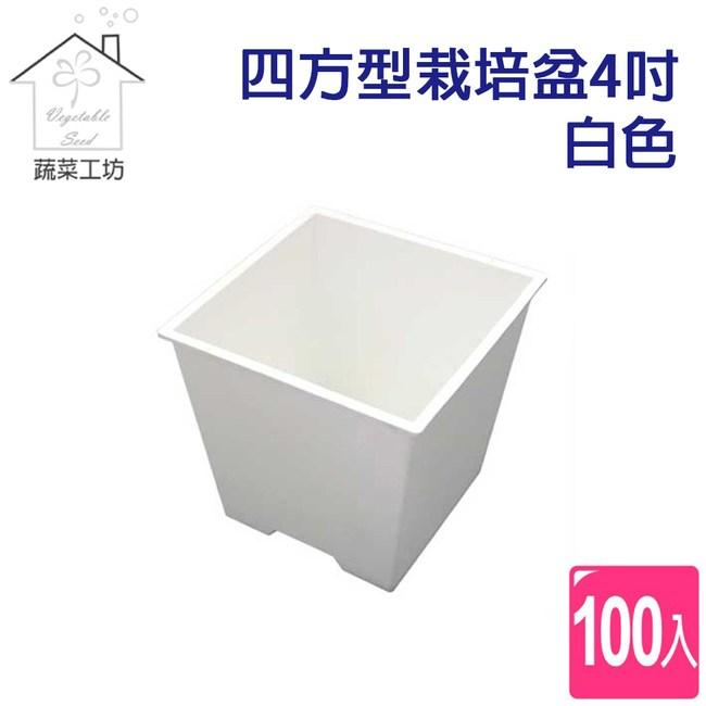 四方型栽培盆4吋-白色(厚)100個/組