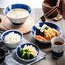 日本美濃燒 蒼天藍 湯碗20.5cm