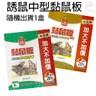 金德恩 台灣製造 動物禁區長條錐形刺板49x4cm+誘鼠中型黏鼠板隨機款1盒2片