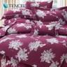 【貝兒居家寢飾生活館】60支頂級天絲銀纖維兩用被床包組(雙人/萊蒂亞)